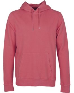 raspberry-pink-colorful-standard-hoody-mannen