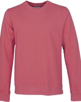 raspberry-pink-colorful-standard-sweater-mannen
